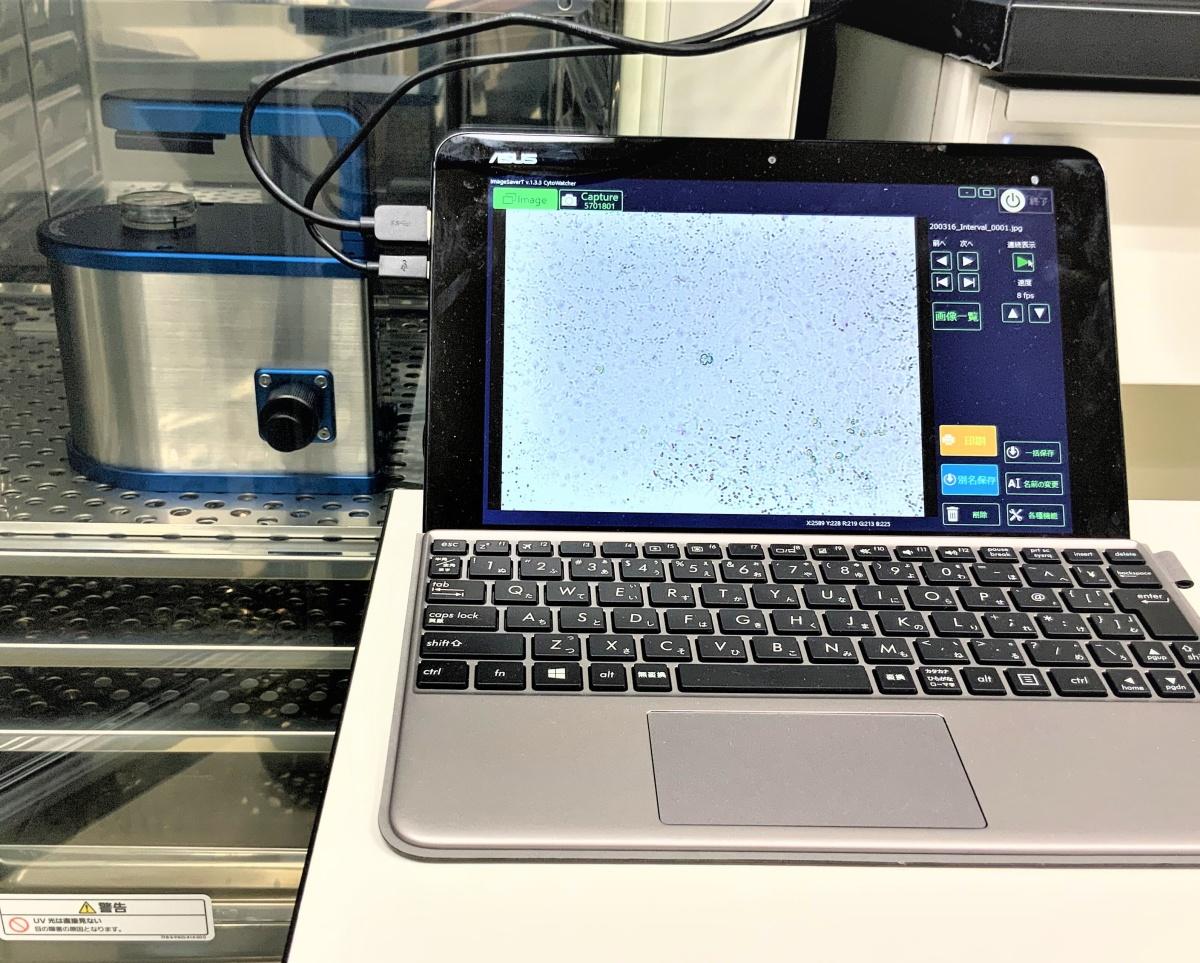 培養細胞タイムラプス観察装置「 WSL-1800 CytoWatcher(ATTO社製)」を、新たに設置しました。