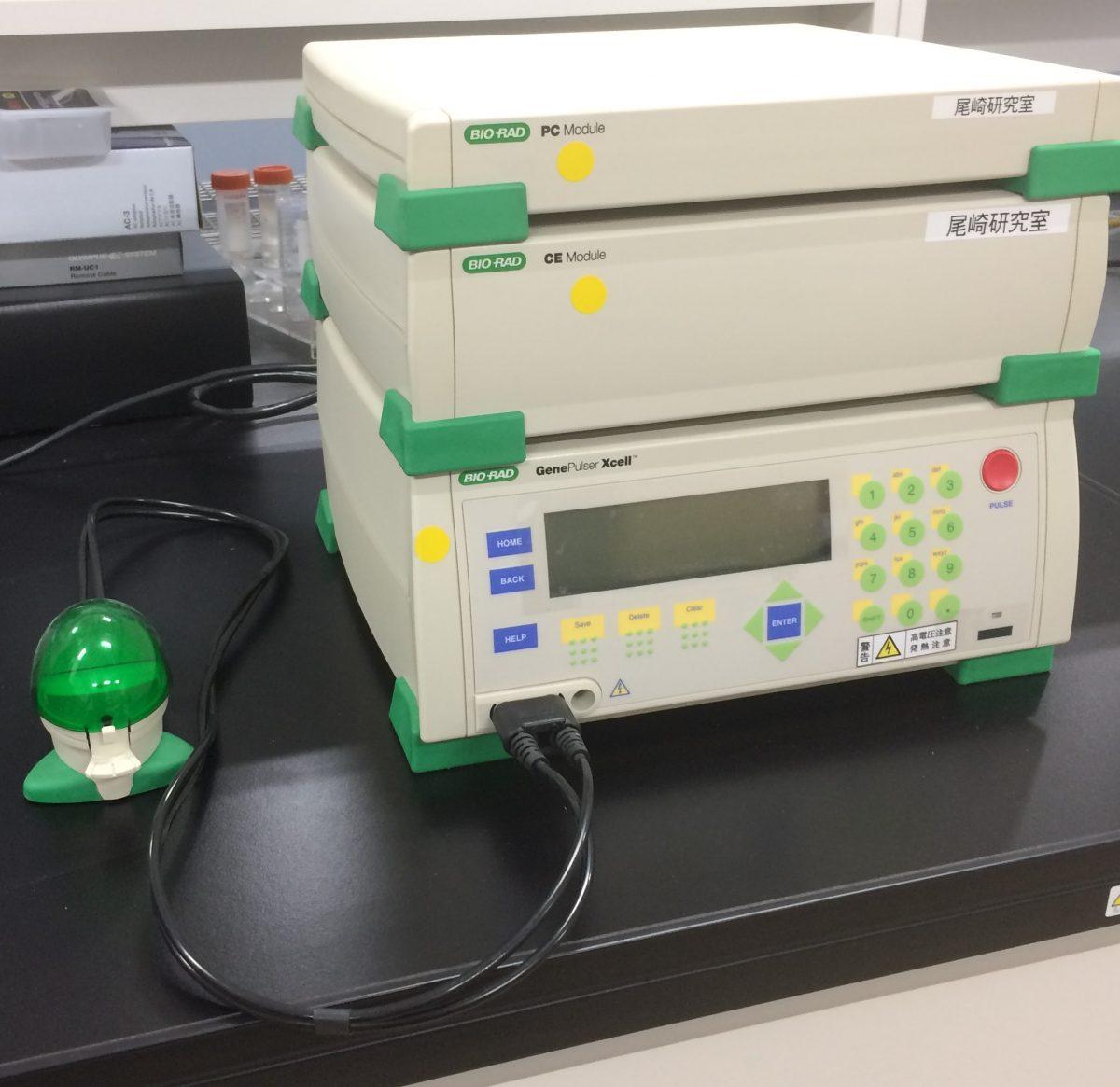 Gene Pulser Xcell™ エレクトロポレーションシステム – Bio-Rad を新たに設置しました
